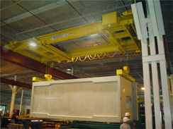 Custom Designed Bridge Crane